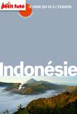 Indonésie Carnet de Voyage 2014 Petit Futé (avec cartes, photos + avis des lecteurs)