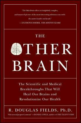 The Other Brain: From Dementia to Schizophrenia, How New Discoveries about the Brain Are Revolutionizing Medicine and Science