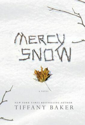 Mercy Snow: A Novel