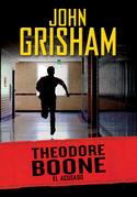 Theodore Boone: El acusado