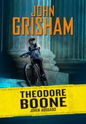 Theodore Boone: Joven abogado