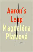 Aaron's Leap