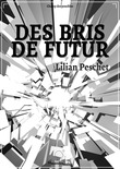 Des bris de futur (version light)