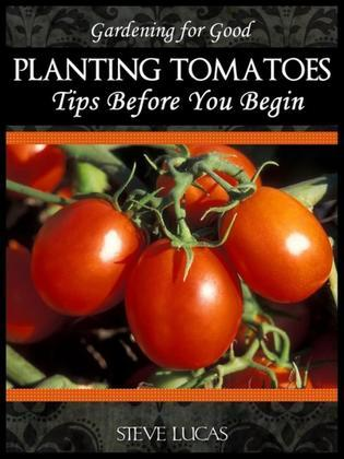 Planting Tomatoes: Tips Before You Begin