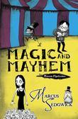Raven Mysteries 5: Magic and Mayhem