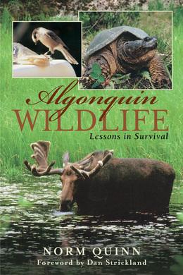 Algonquin Wildlife: Lessons in Survival