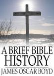 A Brief Bible History: A Survey of the Old and New Testaments