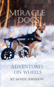 Miracle Dogs: Adventures on Wheels