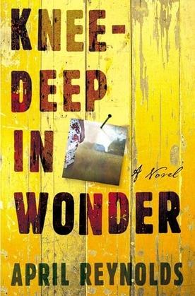 Knee-Deep in Wonder