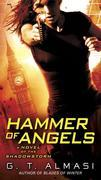 Hammer of Angels: A Novel of Shadowstorm