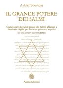 Grande potere di Salmi (Il)