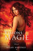Visions de magie