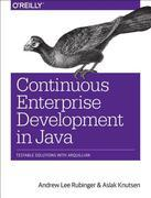 Continuous Enterprise Development in Java