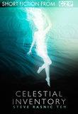 Celestial Inventory