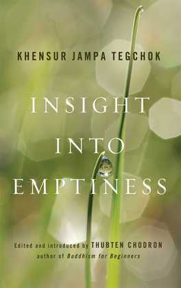 Insight into Emptiness