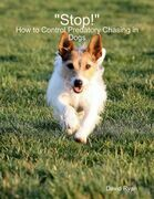 """""""Stop!"""": How to Control Predatory Chasing in Dogs"""