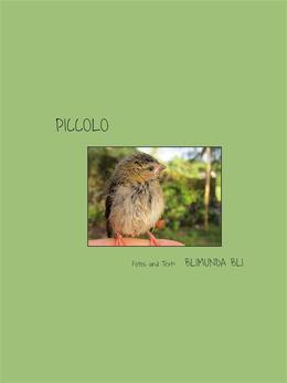 Piccolo - deutsche Version