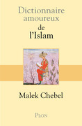Dictionnaire amoureux de l'Islam