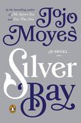 Silver Bay: A Novel