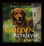 The Golden Retriever: All That Glitters
