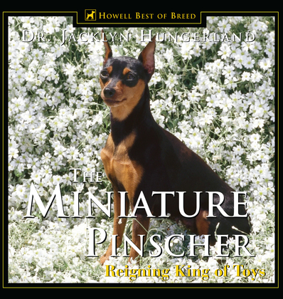 Miniature Pinscher: Reigning King of Toys