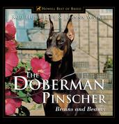 The Doberman Pinscher: Brains and Beauty