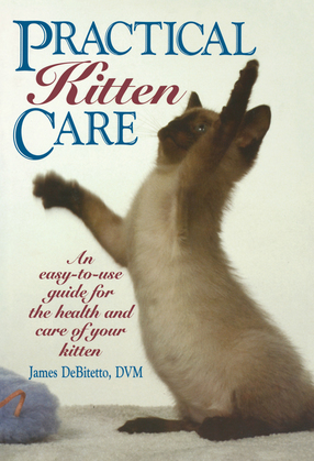 Practical Kitten Care