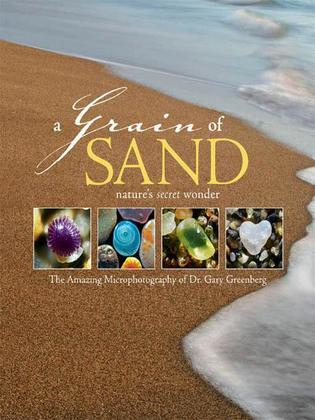 A Grain of Sand: Nature's Secret Wonder