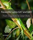 Panasonic Lumix GX7 and GM1: From Snapshots to Great Shots