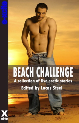 Beach Challenge: A collection of gay erotic stories