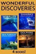 Sharks, Whales, Dolphins, Sea Turtles: The Complete Guide for Beginners & Early Learning