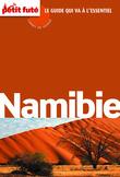 Namibie 2014 Carnet de voyage Petit Futé (avec cartes, photos + avis des lecteurs)