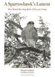 A Sparrowhawk's Lament: How British Breeding Birds of Prey Are Faring