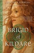 Brigid of Kildare: A Novel