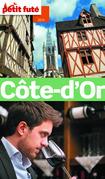 Cote d'Or 2014 Petit Futé (avec cartes, photos + avis des lecteurs)