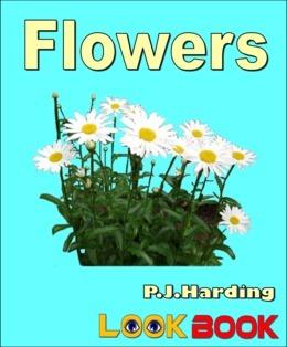Flowers: A LOOK BOOK Easy Reader
