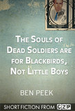 The Souls of Dead Soldiers are for Blackbirds, Not Little Boys