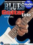Blues Guitar Lessons - Licks: Teach Yourself How to Play Guitar (Free Audio Available)