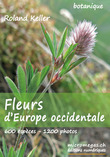 Fleurs d'Europe occidentale