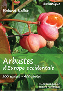 Arbustes d'Europe occidentale