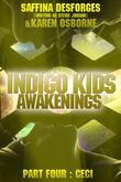 Awakenings: CECI (Indigo Kids): Part Four