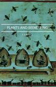 Plants And Beekeeping