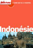Indonésie 2014 Carnet de voyage Petit Futé (avec cartes, photos + avis des lecteurs)