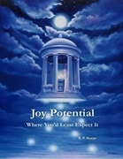 Joy Potential: Where You'd Least Expect It