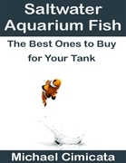 Saltwater Aquarium Fish: The Best Ones to Buy for Your Tank