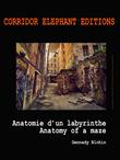 Anatomie d'un labyrinthe