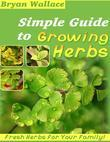 Simple Guide to Growing Herbs - Fresh Herbs for Your Family!