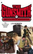 The Gunsmith 391: Showdown in Desperation