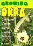 Growing Okra in your vegetable garden