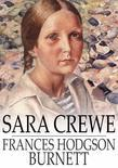 Sara Crewe: Or, What Happened at the Miss Minchin's Boarding School